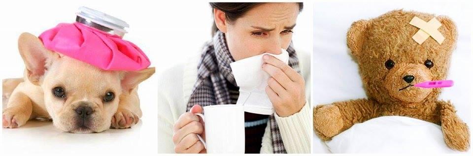 gripe-sistema-imunológico