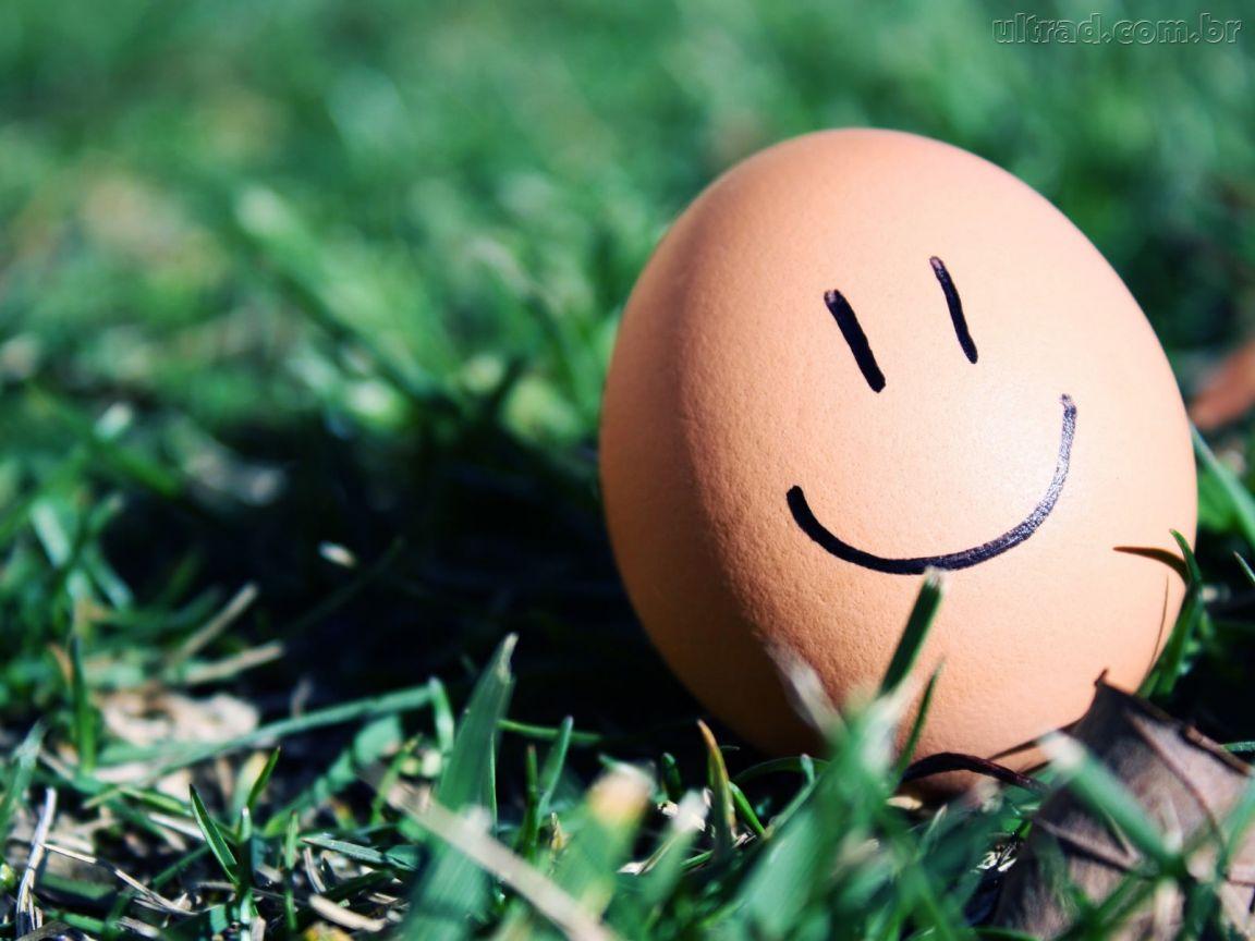 ovo feliz