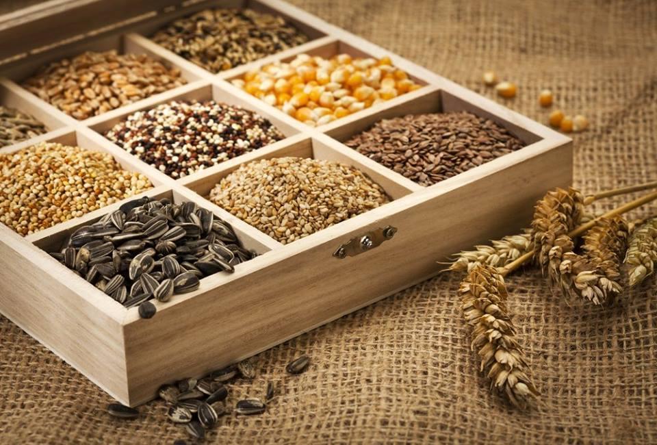 fibras - grãos integrais
