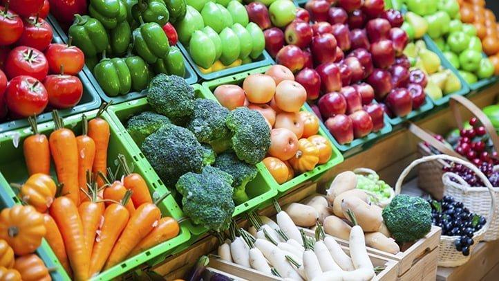 fibras vegetais