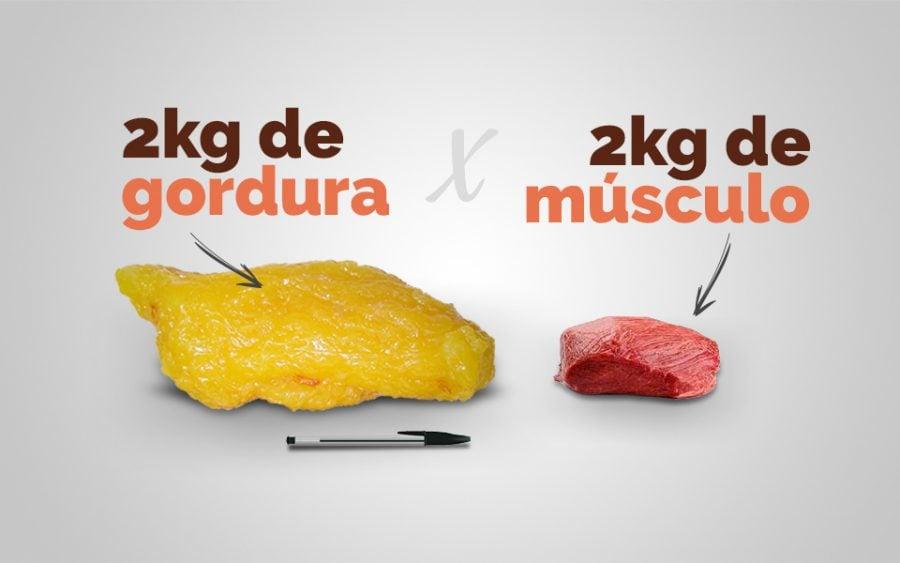 gorduraxmusculo