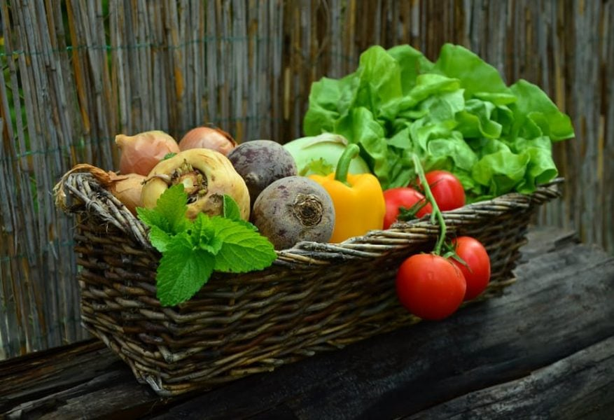 Jejum intermitente alimentação saudável