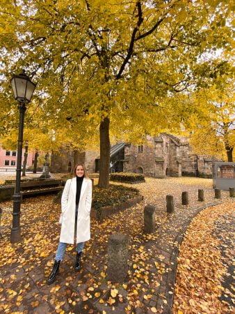 visitar a Alemanha no outono